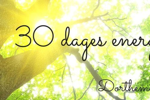 30 dages energitræk