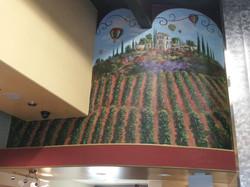 Vineyard at Albertos