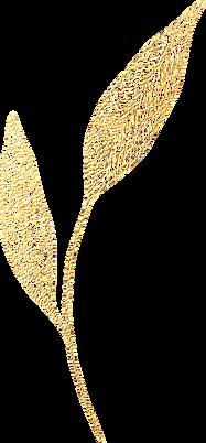 Botanic_Love_Gold_12.png