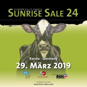SUNRISE SALE Nr. 24 am 29. März!