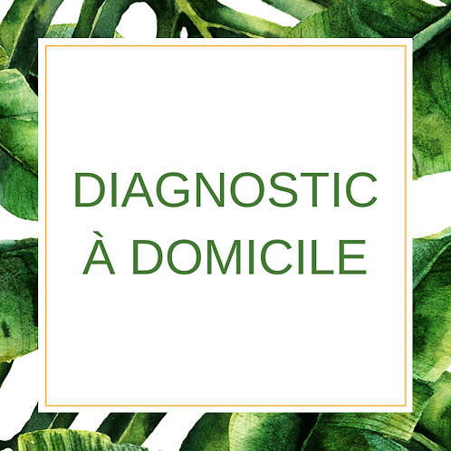 Diagnostic à domicile