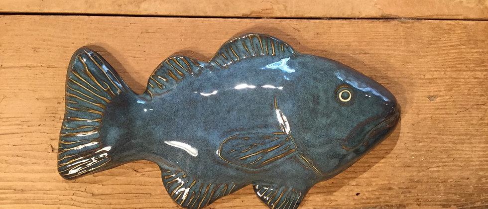 Scott Livesay Fish