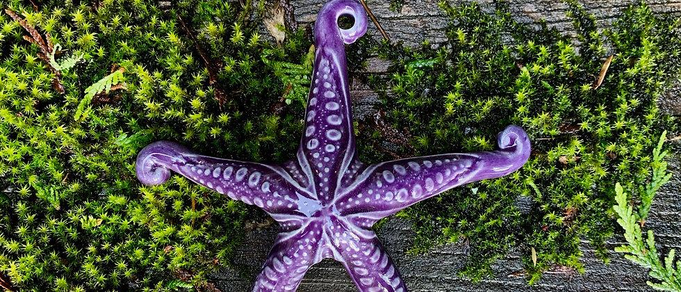 Scott Livesay Small Starfish - Purple