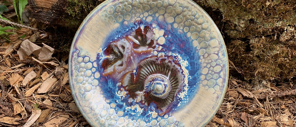 Janet Buskirk Fossil Small Plate #3
