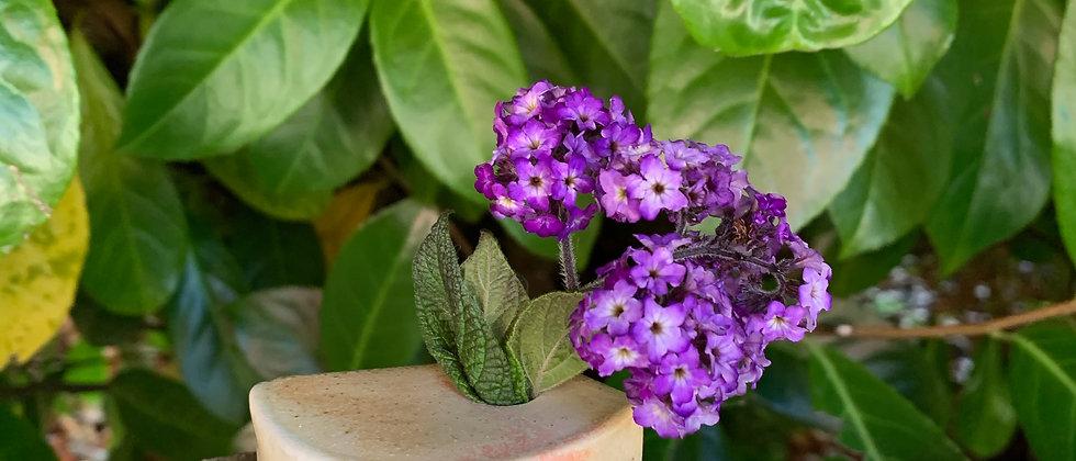 Kimberly Ota Small Slab Vase
