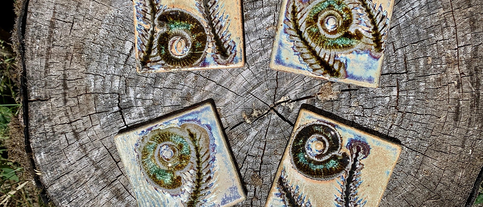 Janet Buskirk Set of Fossil Coasters (4)
