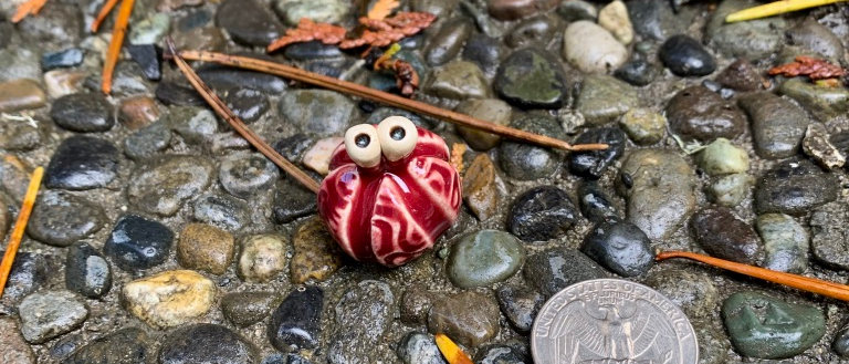 Scott Livesay Urchin - Raspberry