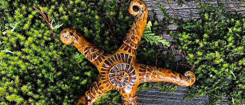 Scott Livesay Small Starfish - Brown