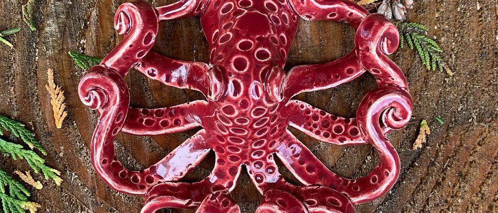 Scott Livesay Octopus