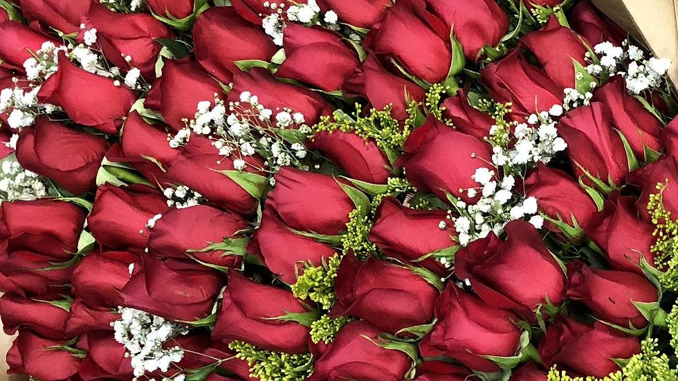 Roses Red Long Stem 70 cm - 100 stems
