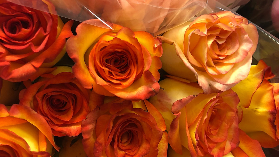 Roses Assorted  in a Box (40cm) 100 stems $0.85 / stem