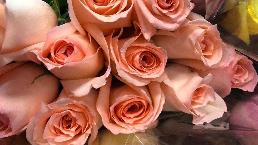 Roses Solid Color  per Box |100 stems | 40 cm stems | $1.20 / stem