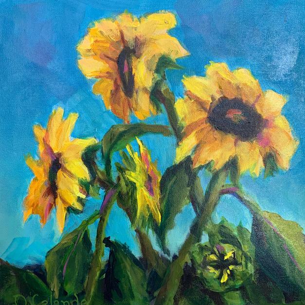 Sunflowers in Bloom II