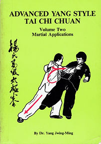 R-Yang, Jwing-ming-Advanced Yang Style T