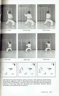R-Yamaguchi, Gosei-Gojo-ryu Karate D.jpg