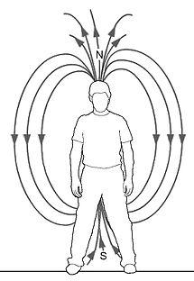 Magnet 3.jpg