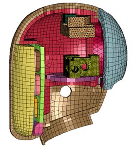 Head Finite Element Model interior side.