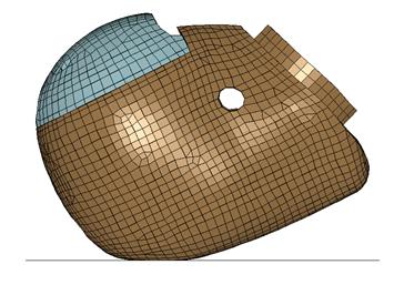 THOR Head Finite Element Model 2.png