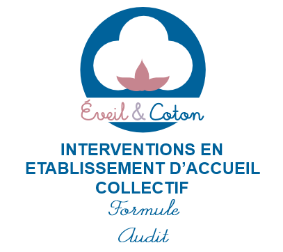 Intervention en établissement - Formule Audit