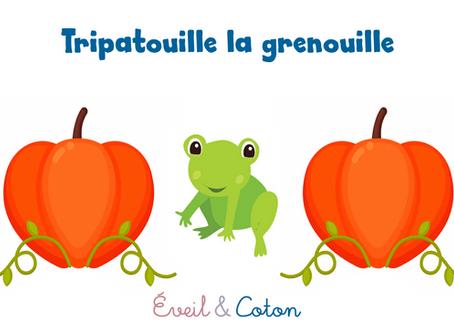 """Fiche """"Tripatouille la Grenouille"""""""
