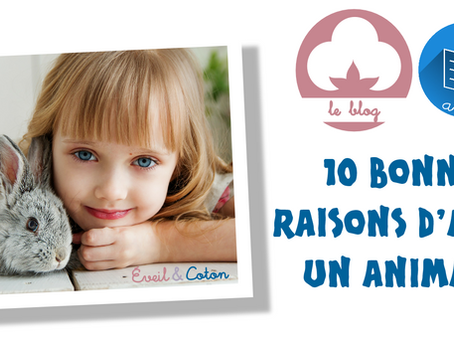 10 bonnes raisons d'avoir un animal !
