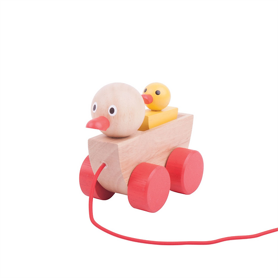 Canard et son caneton
