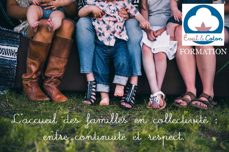 L'accueil des familles en collectivité - 6H - 21/04/2018 (68)