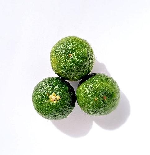 Sudachi 2L du JAPON - 3 fruits