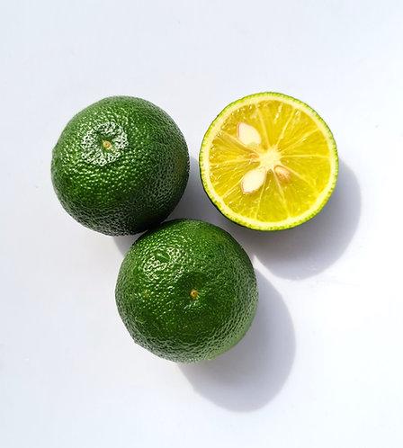 Sudachi 3L - 3 fruits