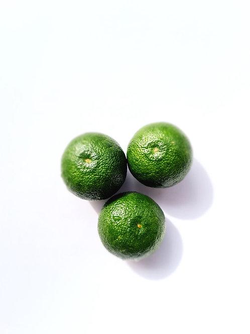 Sudachi L - 3 fruits