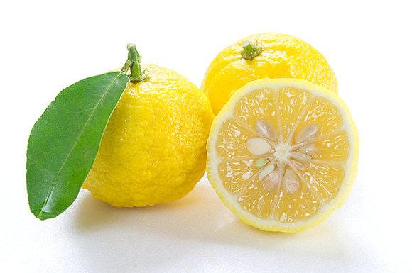 Yuzu - fruit de 130 à 180g pièce