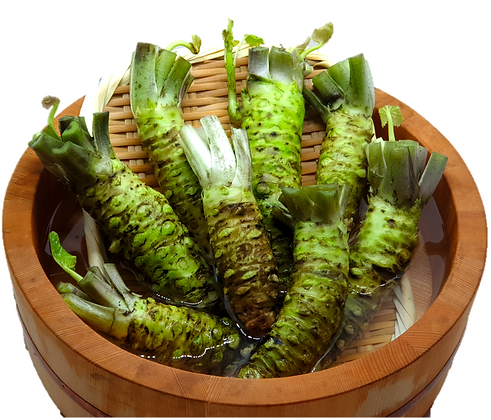 1.5kg of Wasabi