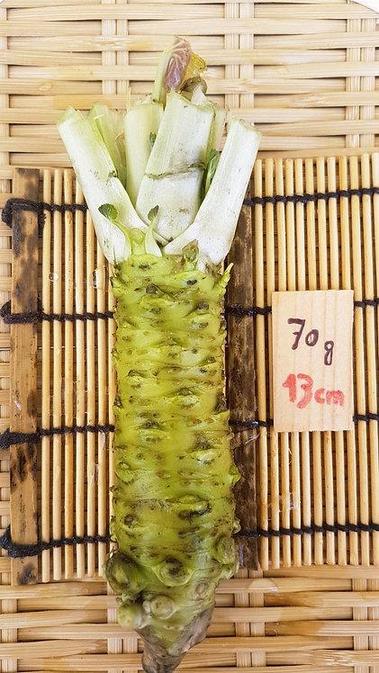 わさび・Wasabi du JAPON - 65/95g