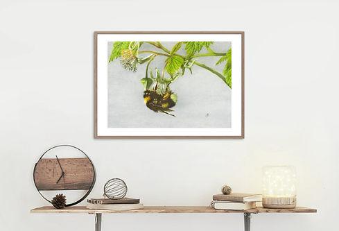 Bumblebee frame mounted.jpg