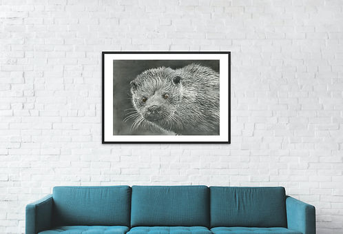 Otter Mounted Black frame.jpg