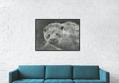 Shetland Sea Otter: