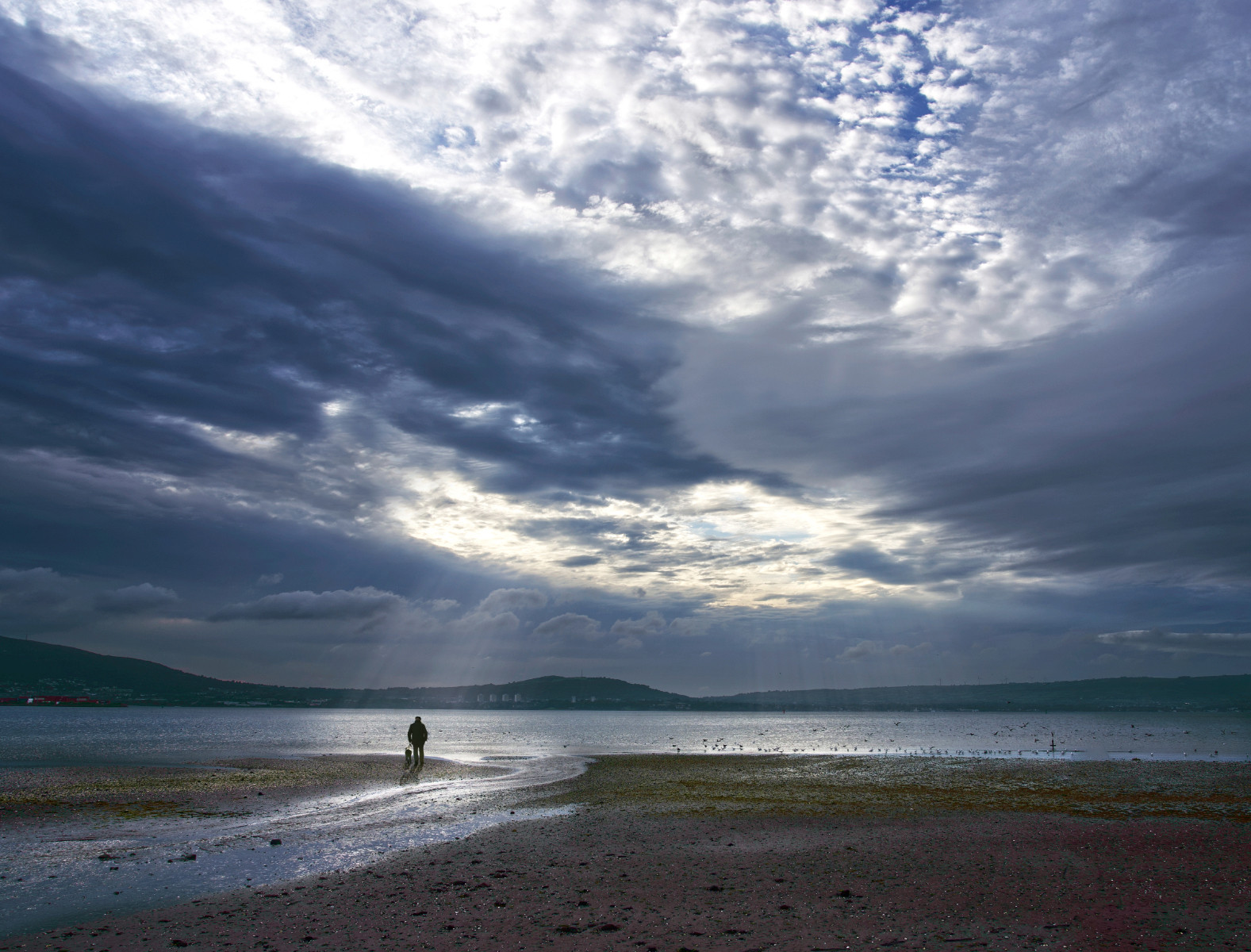 COLOUR - Stranger On The Shore by Damian McDonald (8 marks)