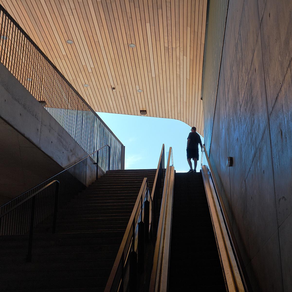 COLOUR - Escalate by Damian McDonald (9 marks)