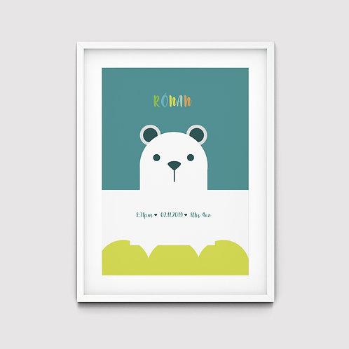 Baby Bear - Ronan