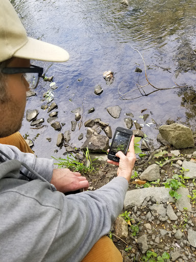 Our blogger, being a naturalist, using iNaturalist.