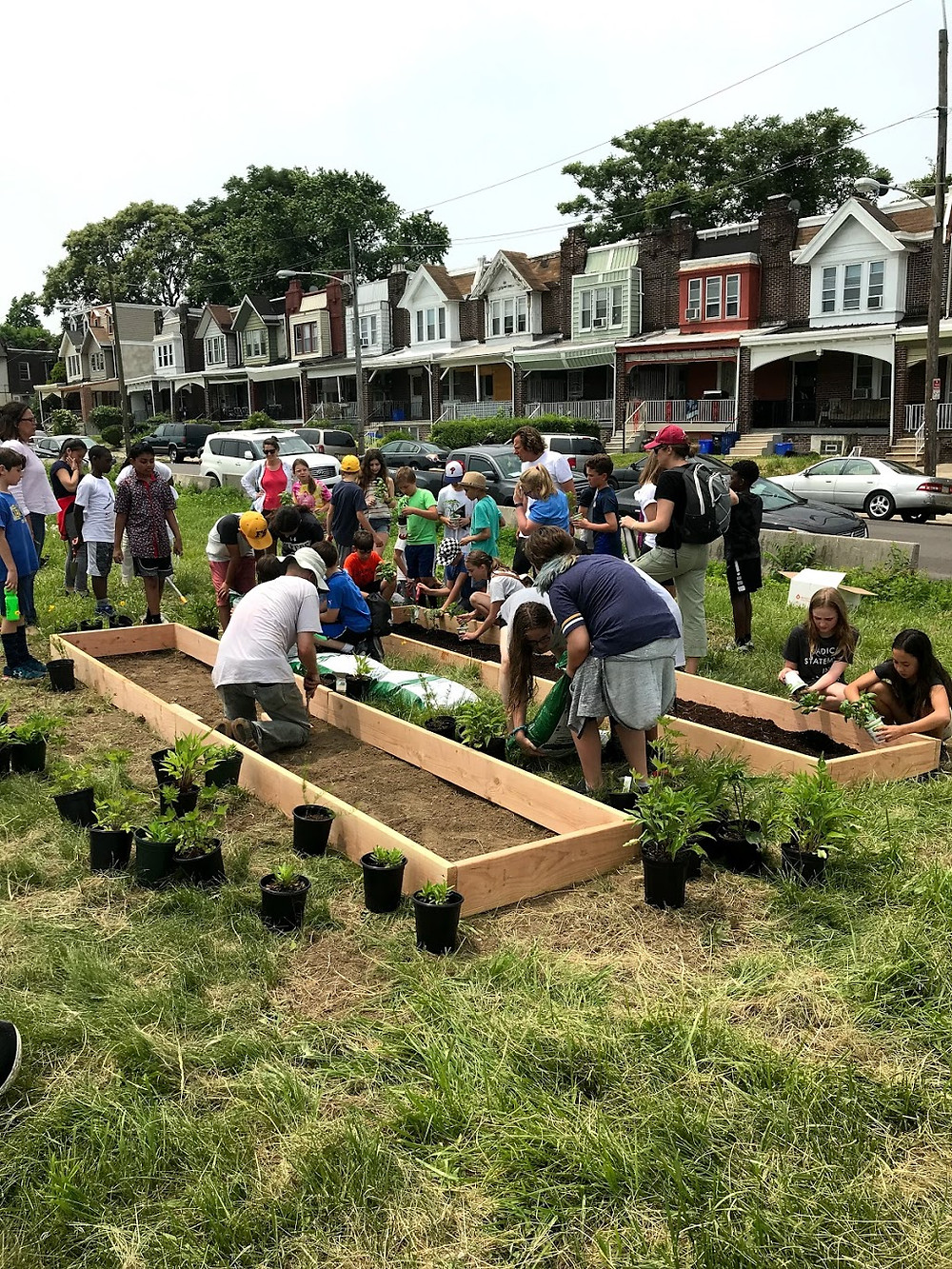 LandHealth Institute staff and schoolchildren from Friends Select gardening together.