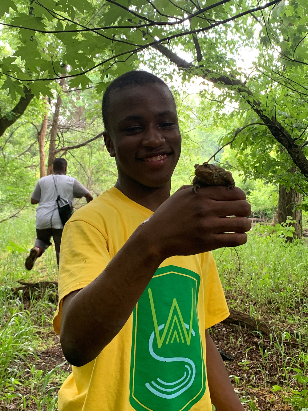 Steward Christian Kelly, holding an American Toad (Anaxyrus americanus, formerly genus Bufo) at Cobbs Creek Park.