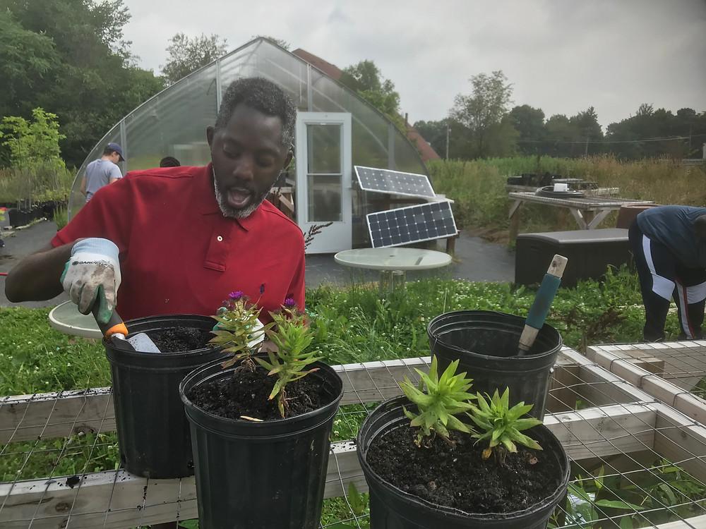 SpArc participant moving plants to larger pots.