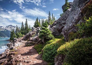 pine-valley (2).jpg
