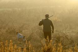 Cacciatore e cane tramonto