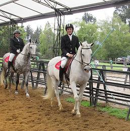 Clases de Equitación en Chía para que quieran competir