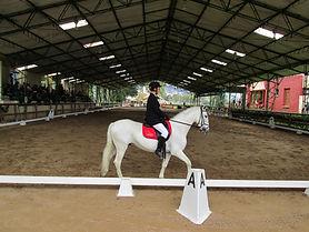 Resultados de Kabalia - Academia de Equitación