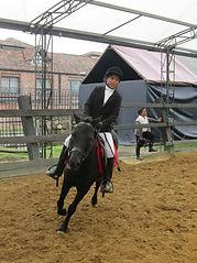 Clases de Adiestramiento Avazado en Kabalia - Academia de Equitación
