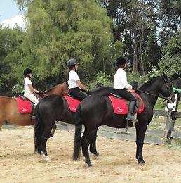 Clases de Equitación en Chía para estudiantes con conocimientos básicos que quieran mejorar y llegar a competir