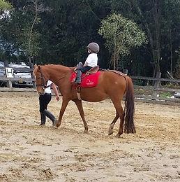 Clases de Equitación en Chía para principiantes
